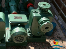Marine Bronze General Serive Water Pump With Mechanical Seal