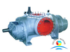 Marine Horizontal Oil Field Large-scale Twin Screw Pump